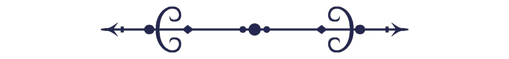 divisore sartoria leonardo
